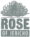 Rose of Jericho Logo