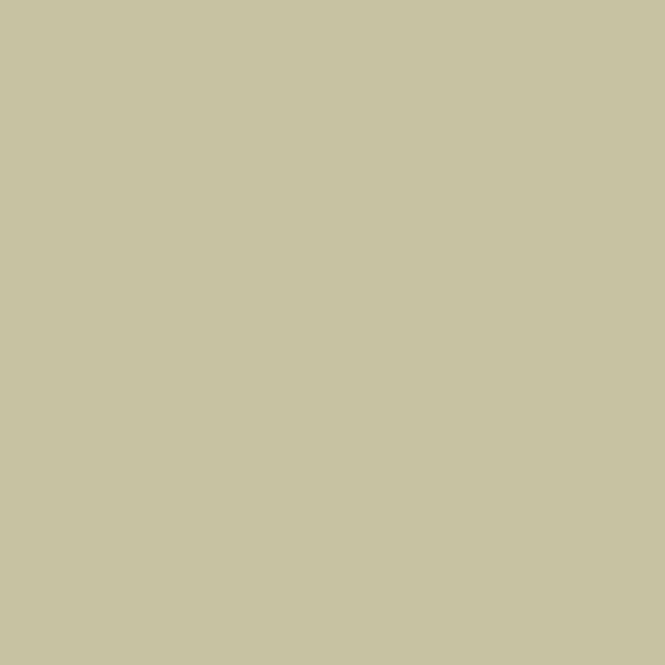 mountain green distemper paint limewash